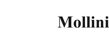 Mollini