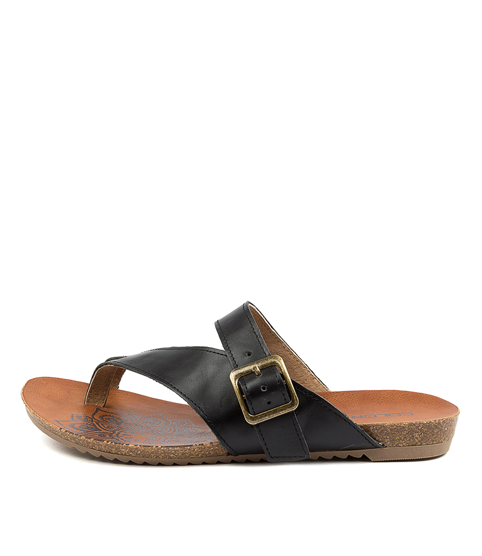 Buy Colorado Ancona Cf Black Flat Sandals online with free shipping