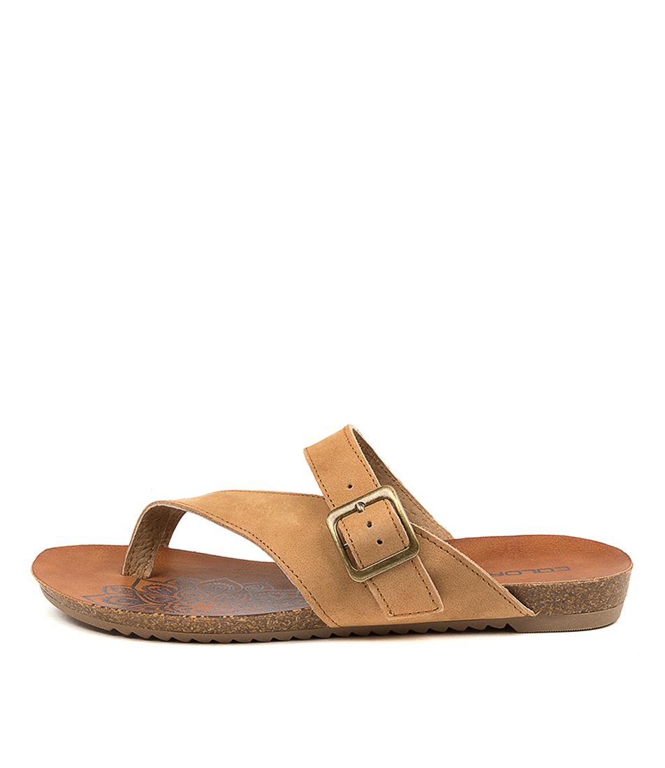Buy Colorado Ancona Cf Dk Taupe Flat Sandals online with free shipping