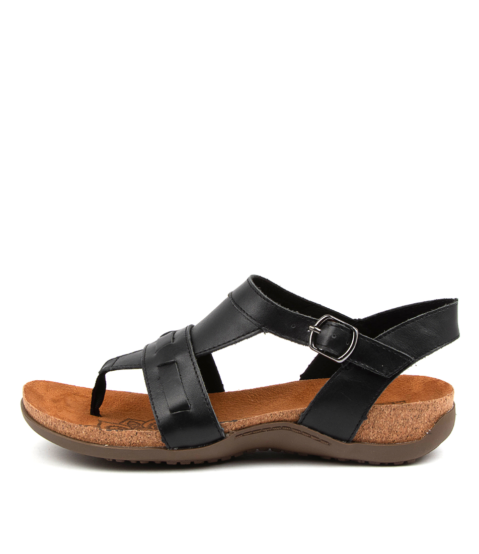 Buy Colorado Edom Cf Black Flat Sandals online with free shipping