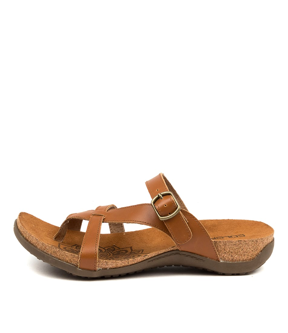 Buy Colorado Eklana Cf Tan Flat Sandals online with free shipping