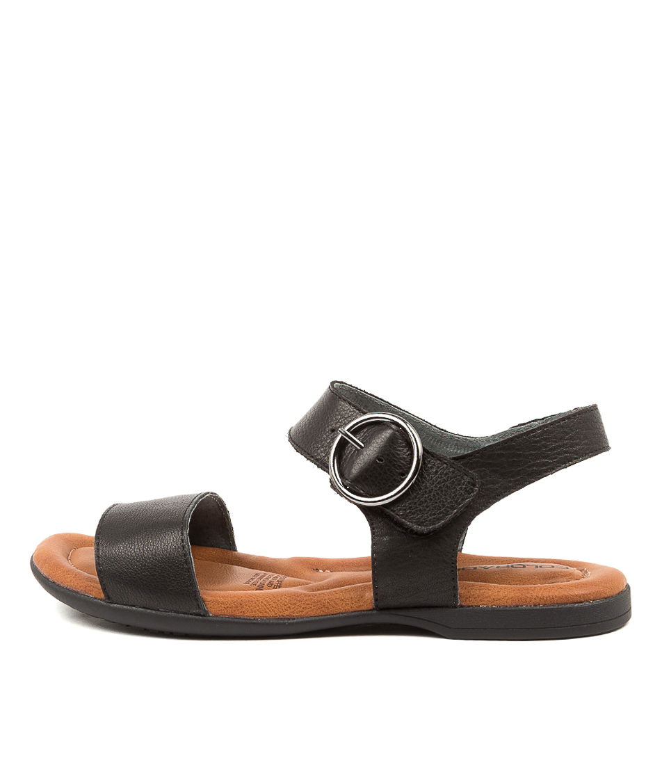 Buy Colorado Kadence Cf Black Flat Sandals online with free shipping