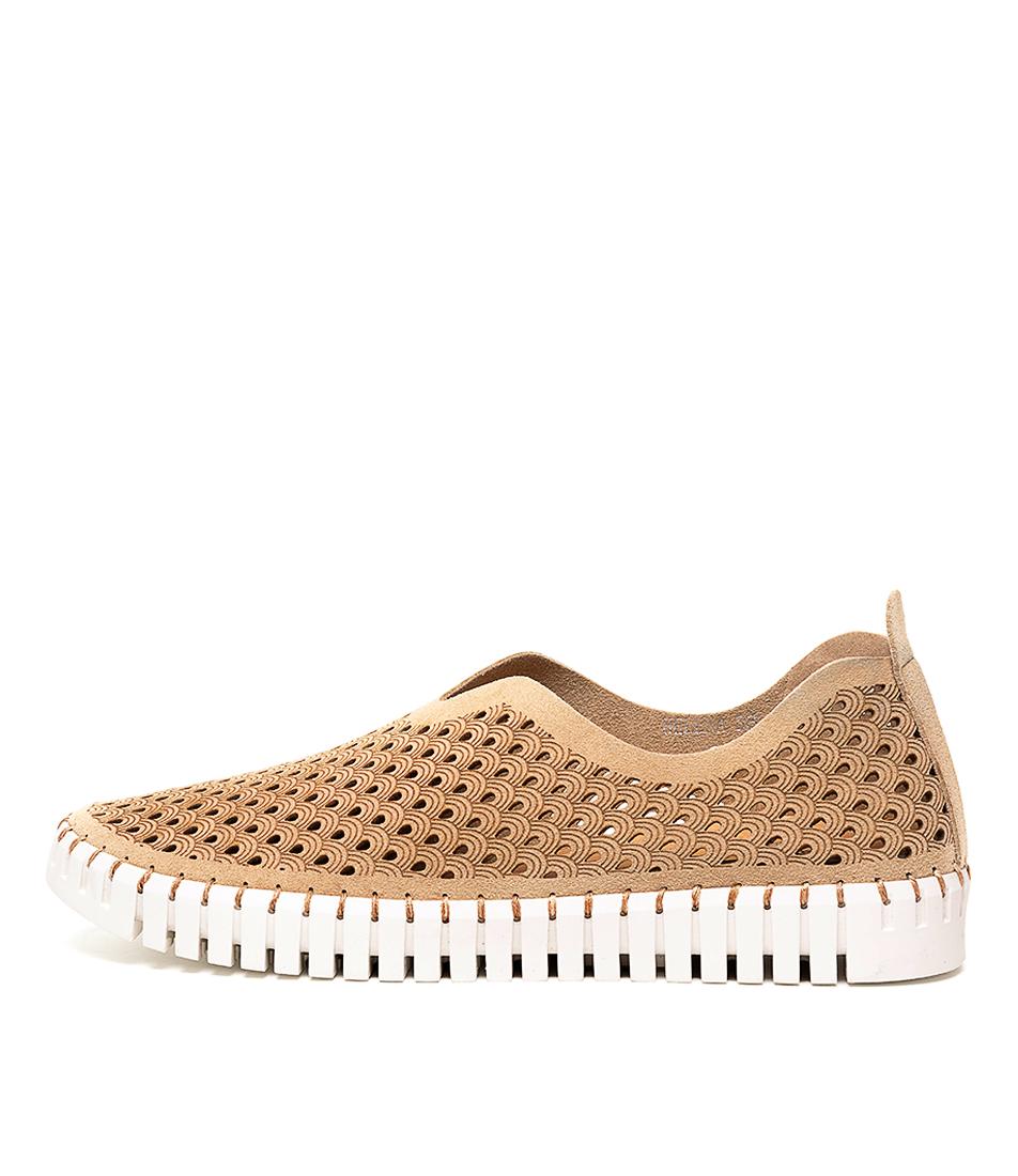 Buy Django & Juliette Helena Latte Sneakers online with free shipping
