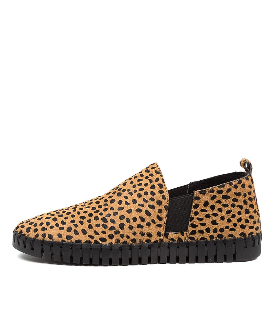 Buy Django & Juliette Honkey Dj Tan Dot Black Sole Sneakers online with free shipping