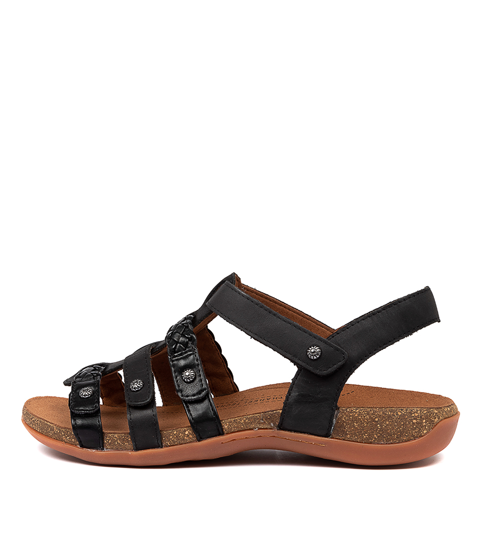 Buy Scholl Asaka Hs Black Sandals online with free shipping