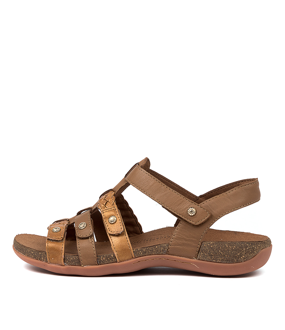 Buy Scholl Asaka Hs Cognac Tan Flat Sandals online with free shipping