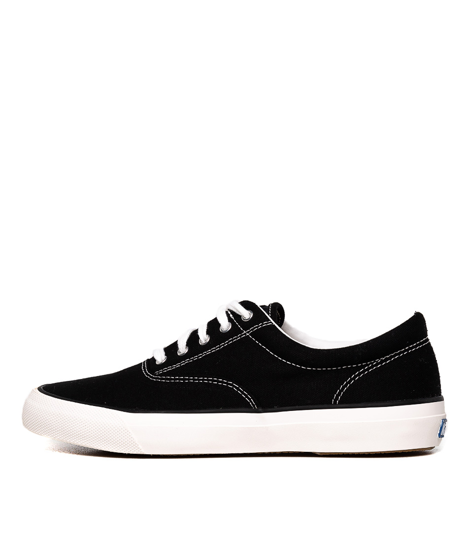 Buy Keds Anchor Canvas Black Sneakers online with free shipping