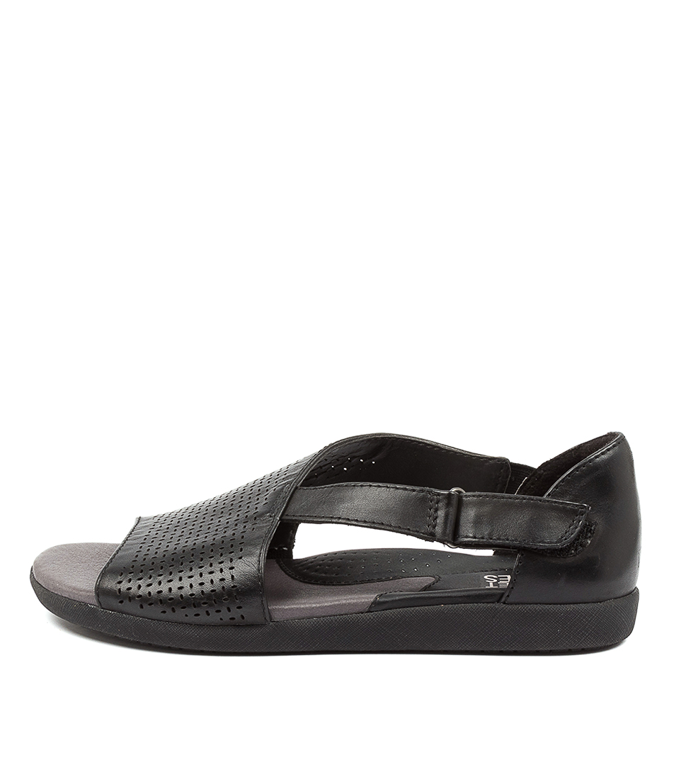 Buy Planet Brin Pl Black Flat Sandals online with free shipping