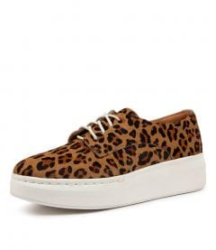 DERBY CITY NEW LEOPARD